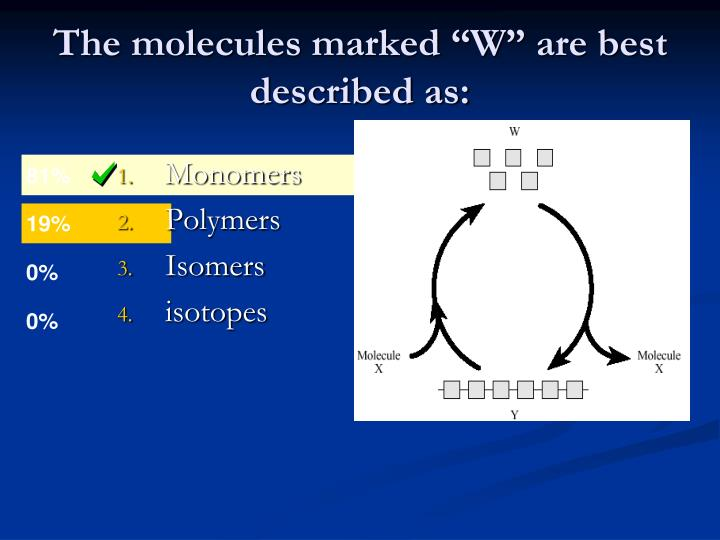 """The molecules marked """"W"""" are best described as:"""