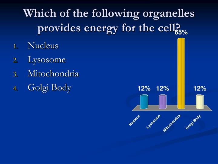Which of the following organelles provides energy for the cell?