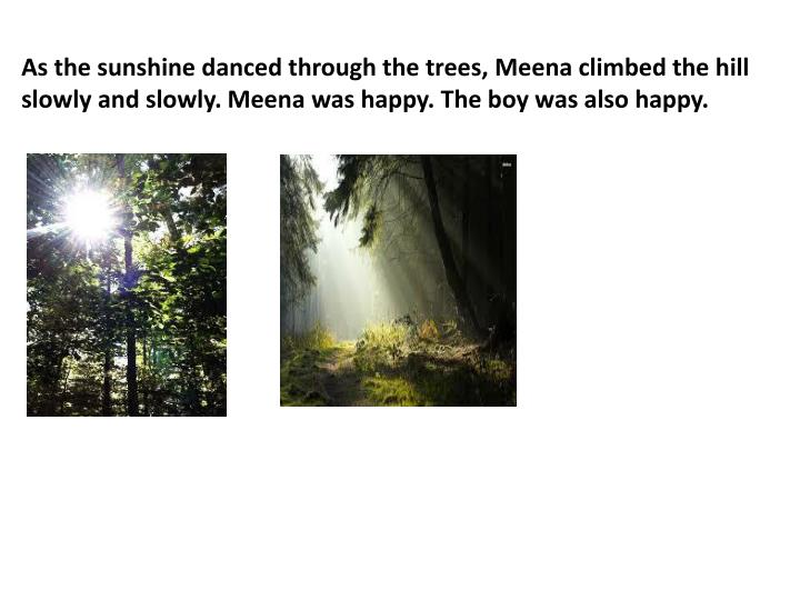 As the sunshine danced through the trees,
