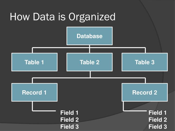 How Data is Organized