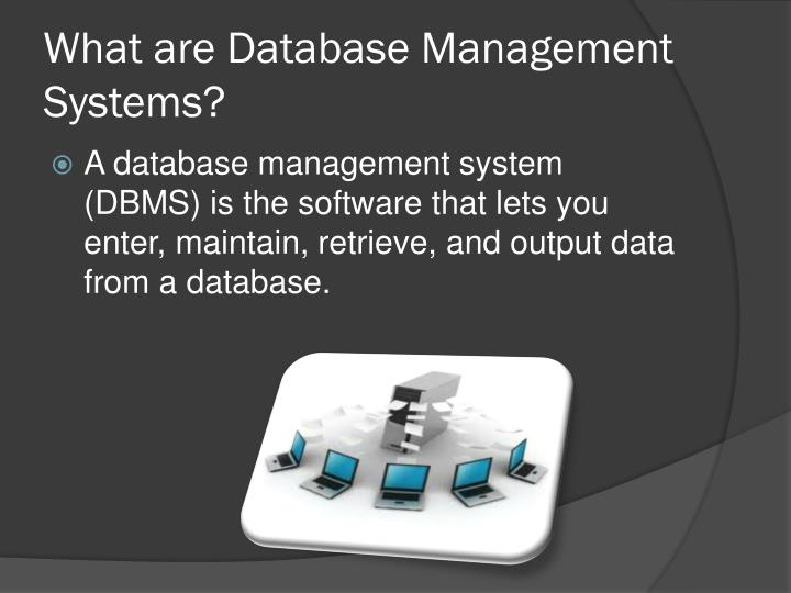 What are Database Management Systems?