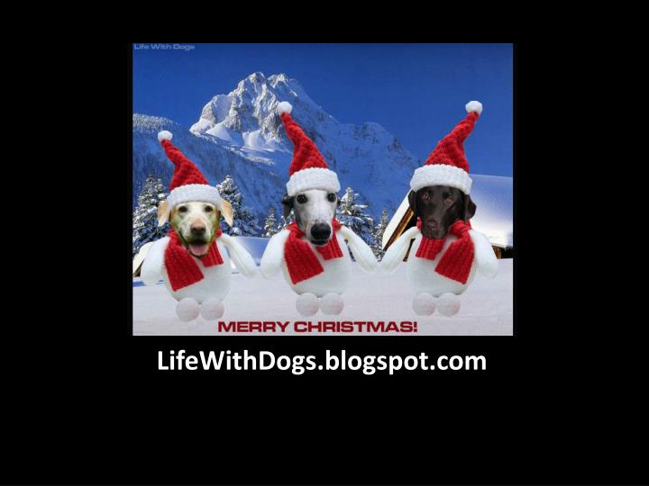 LifeWithDogs.blogspot.com