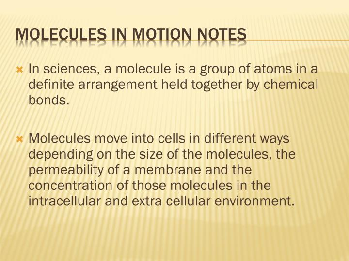 In sciences, a molecule is a group of atoms in a definite arrangement held together by chemical bonds.