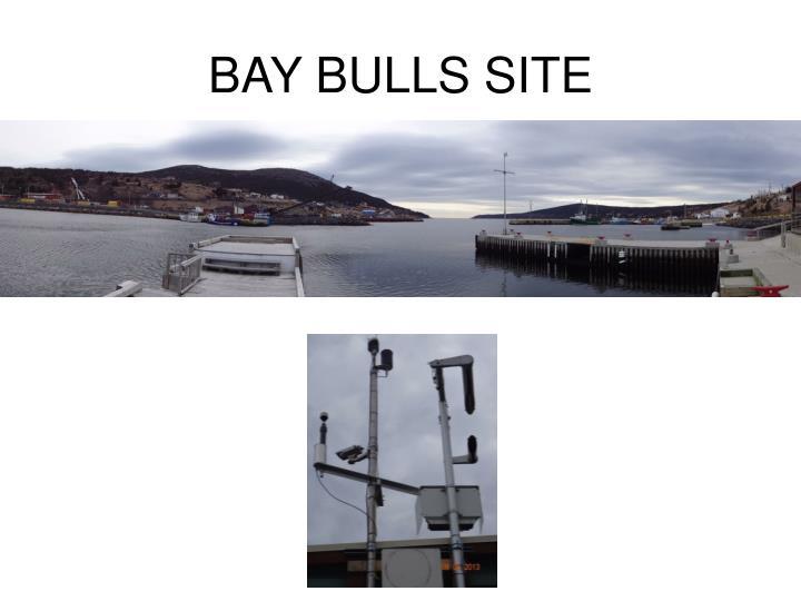 BAY BULLS SITE
