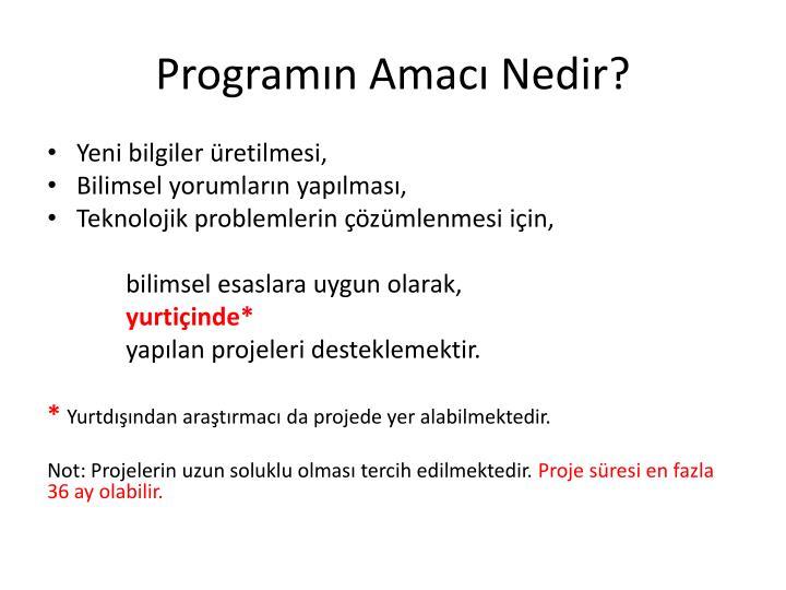 Programın Amacı Nedir?