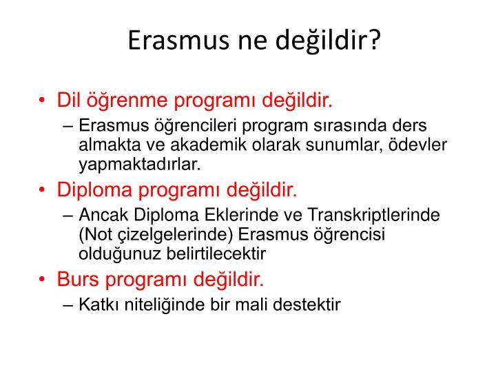Erasmus ne değildir?