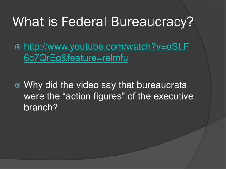What is federal bureaucracy