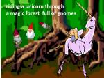 riding a unicorn through a magic forest full of gnomes