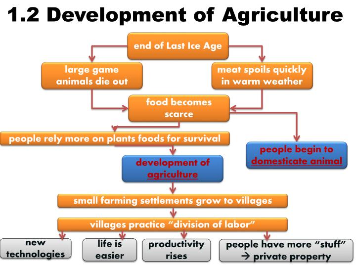 1.2 Development of Agriculture