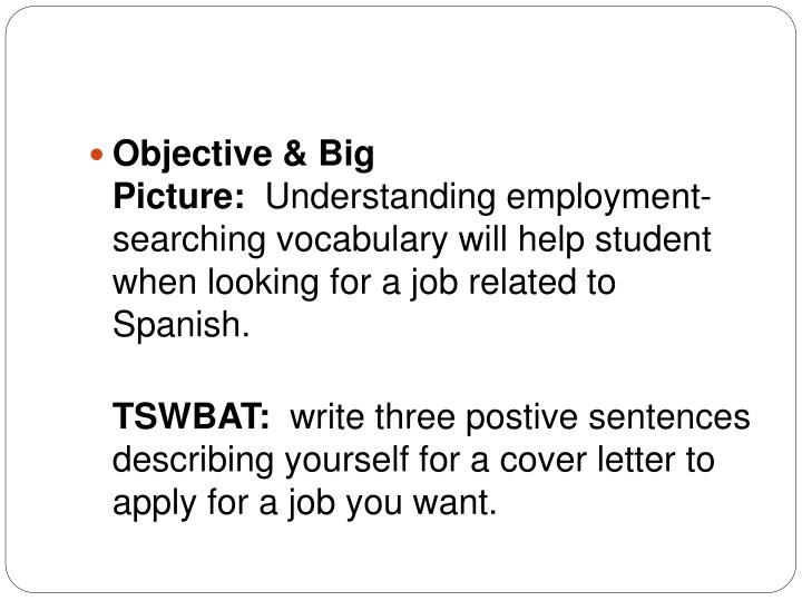 Objective & Big Picture: