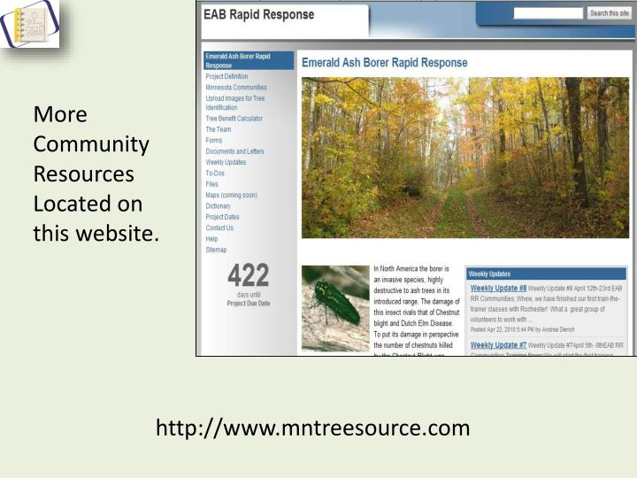 More Community Resources Located on this website.