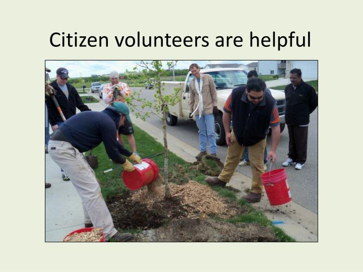 Citizen volunteers are helpful