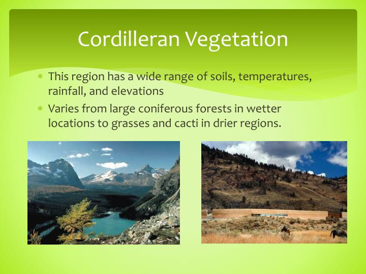 Cordilleran Vegetation