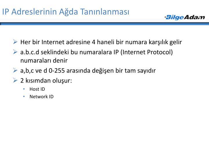 IP Adreslerinin Ağda Tanınlanması