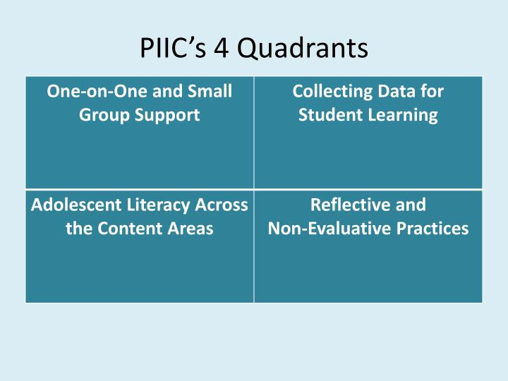 PIIC's 4 Quadrants