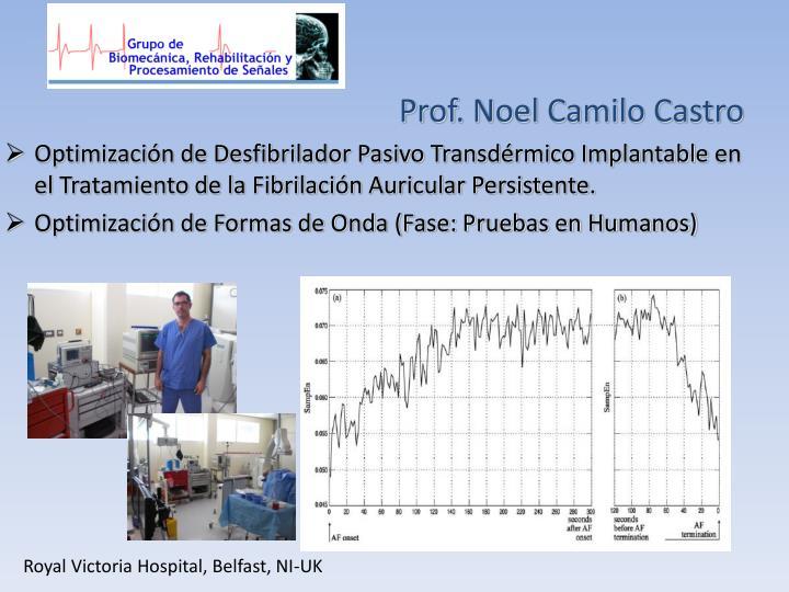 Prof. Noel Camilo Castro