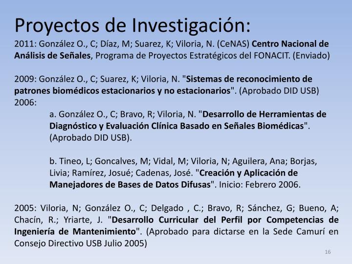 Proyectos de Investigación: