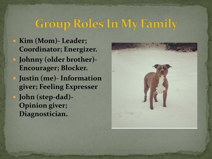 Group Roles In My Family