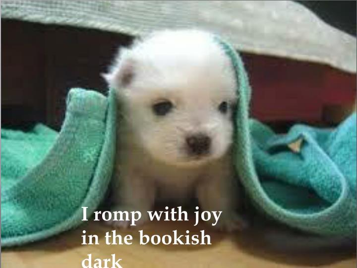 I romp with joy in the bookish dark