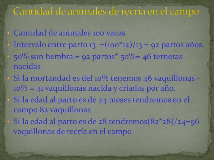 Cantidad de animales de recria en el campo