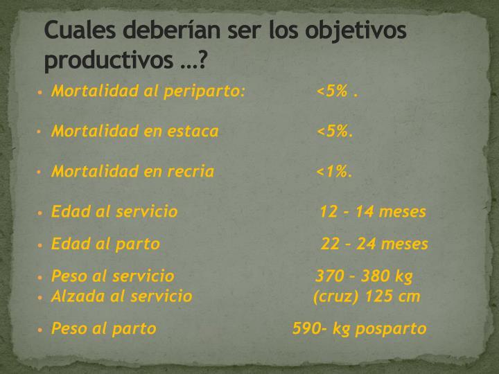 Cuales deberían ser los objetivos productivos …?