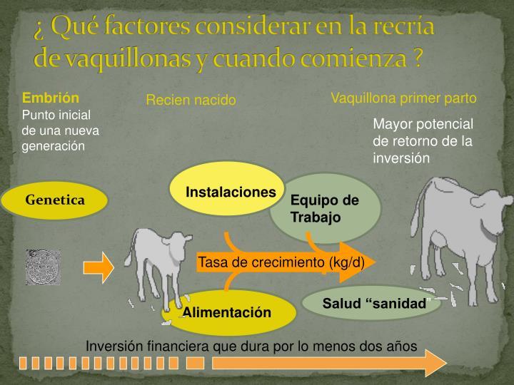 ¿ Qué factores considerar en la recría de vaquillonas y cuando comienza ?