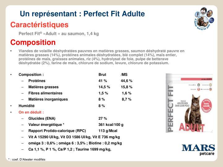Un représentant : Perfect Fit Adulte