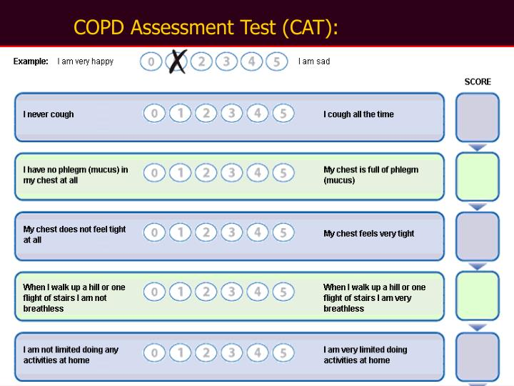 COPD Assessment Test (CAT):