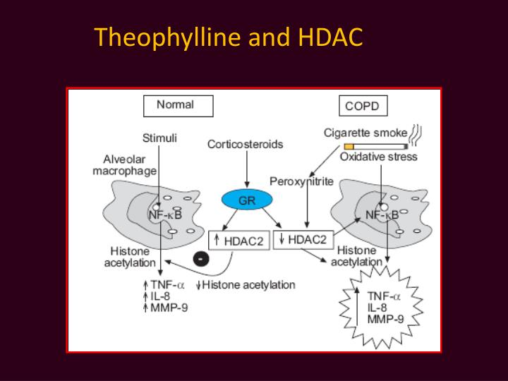 Theophylline and HDAC