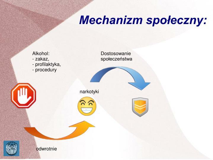Mechanizm społeczny: