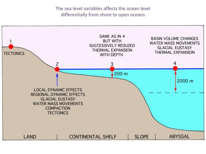 The sea level variables affects the ocean level