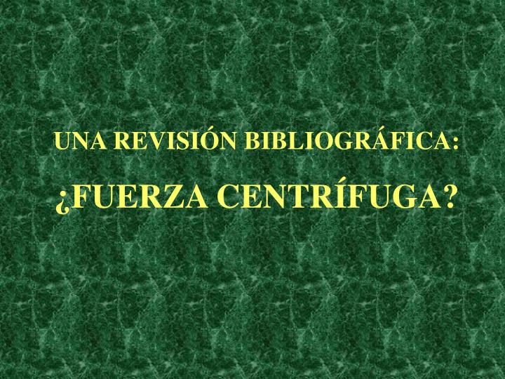 UNA REVISIÓN BIBLIOGRÁFICA: