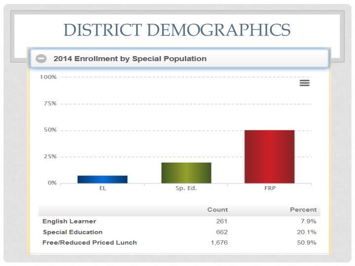 District Demographics