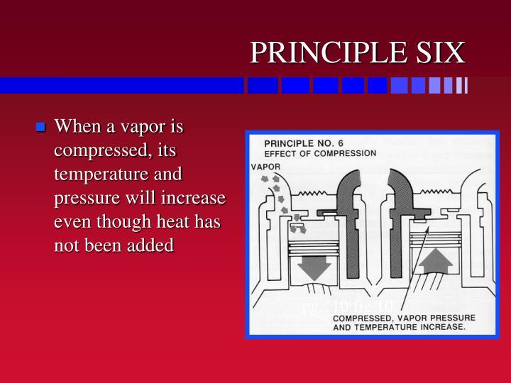 PRINCIPLE SIX