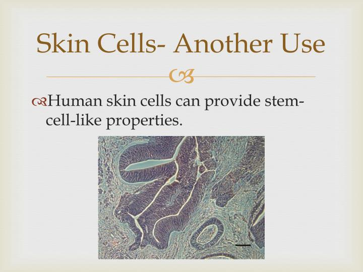 Skin Cells- Another Use