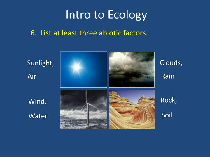 6.  List at least three abiotic factors.