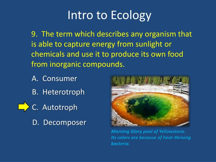 9.  The term which describes any organism that is able to capture energy from sunlight or chemicals and use it to produce its own food from inorganic compounds.