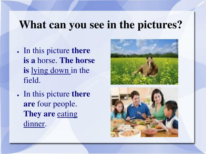 What can you see in the pictures