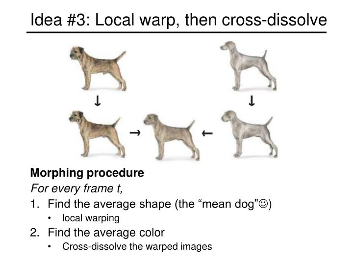 Idea #3: Local warp, then cross-dissolve