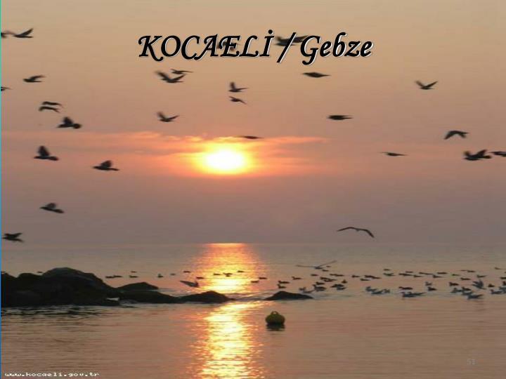 KOCAELİ / Gebze