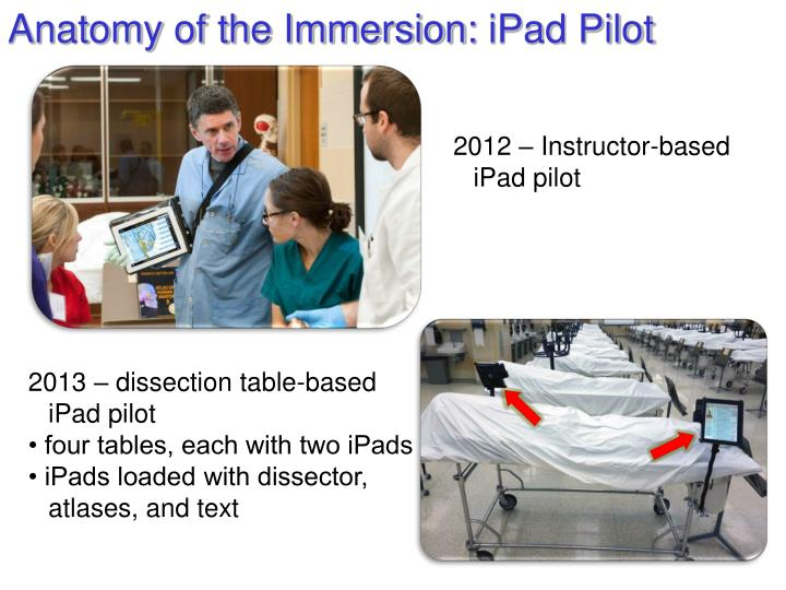Anatomy of the Immersion: