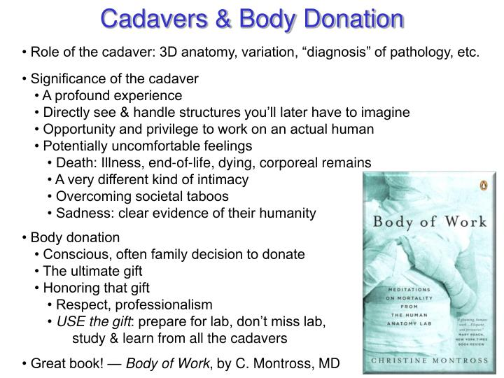 Cadavers & Body Donation