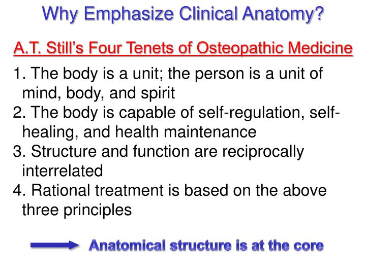 Why Emphasize Clinical Anatomy?