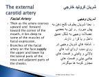 the external carotid artery8
