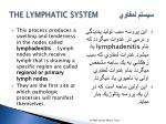 the lymphatic system3