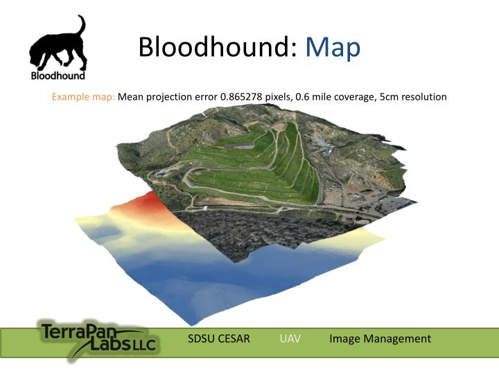 Bloodhound: