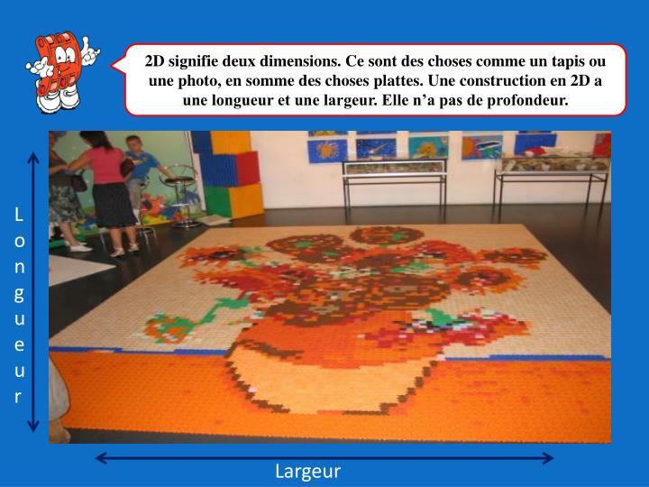 2D signifie deux dimensions. Ce sont des choses comme un tapis ou une