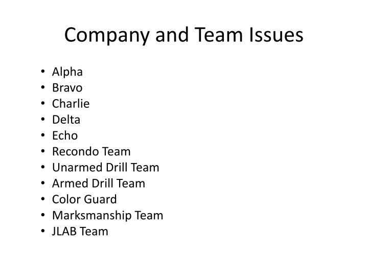Company and Team Issues