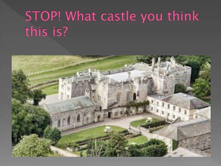 STOP! What castle you think this is?