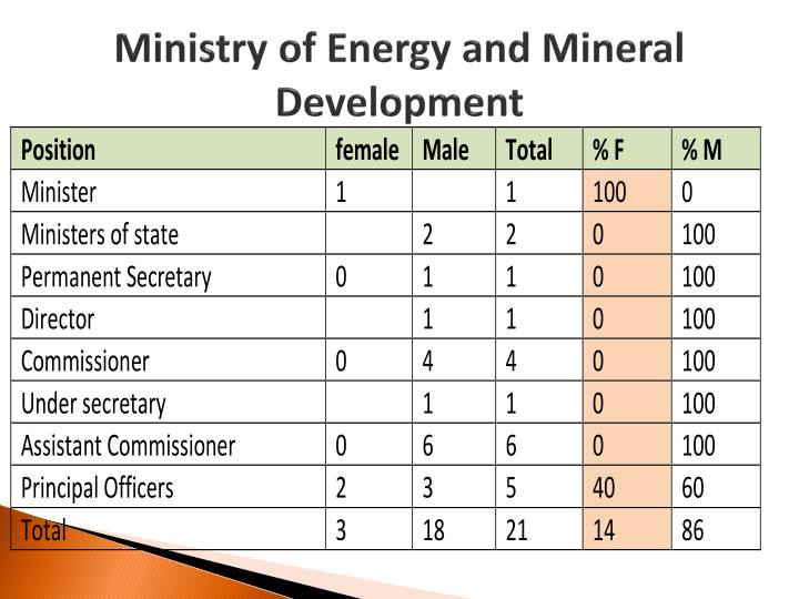 Ministry of Energy and Mineral Development